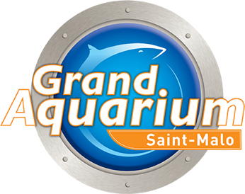 Le Grand Aquarium